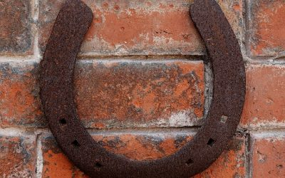 Tips for when you've Lost or Sprung a Horse Shoe